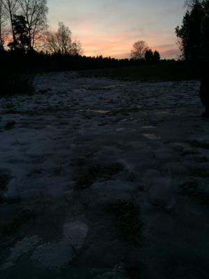 solstice-1574.jpg