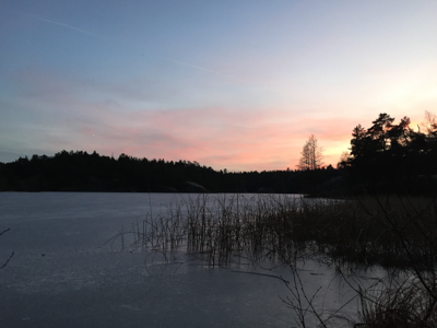 solstice-1580.jpg