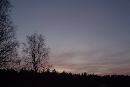 solstice-9686.jpg