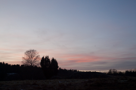 solstice-9688.jpg