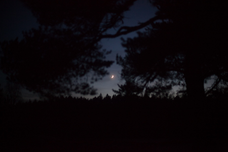 solstice-9732.jpg
