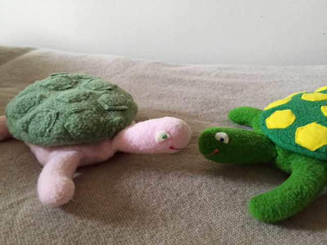 SK Beaumont Turtles