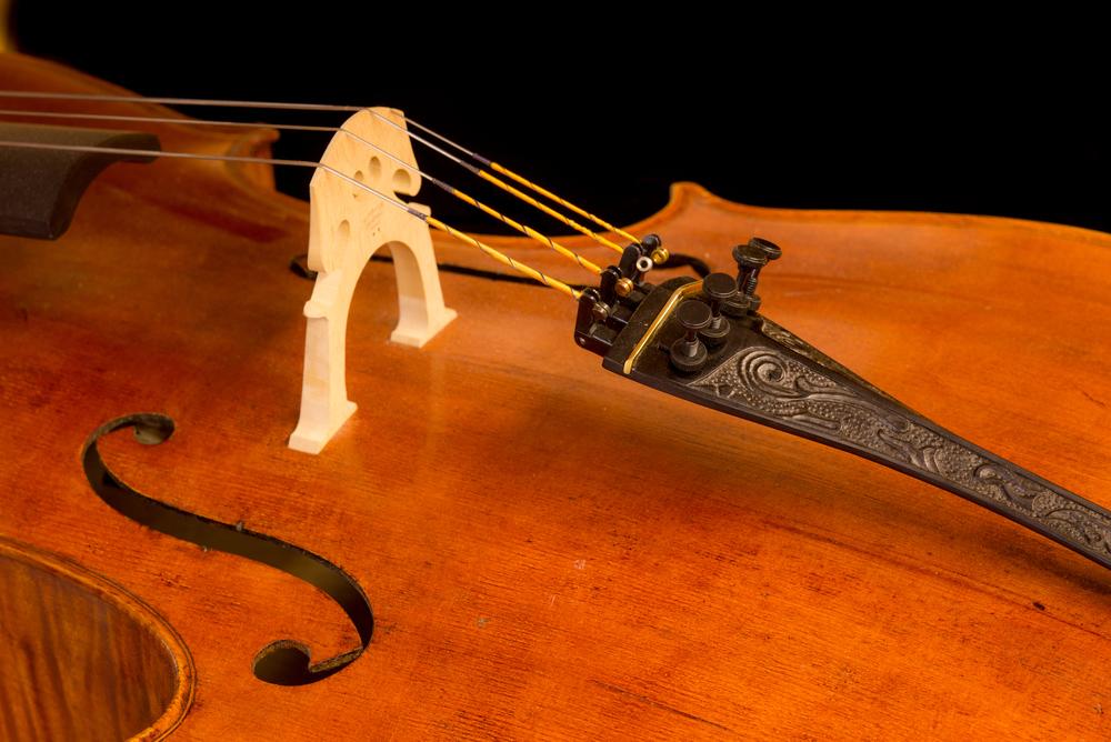 Perley Cello-43.jpg