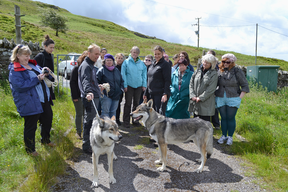 Sacred Sound Womens Choir members walking with wolves at Predator Experience in Cumbria, as part of their research for 'Neck of the Woods' Photo: Ange Cobham for Manchester International Festival