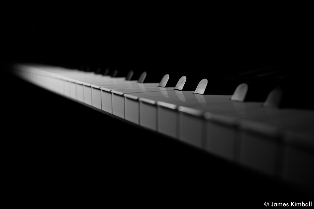 Spotlight Piano Keys.jpg