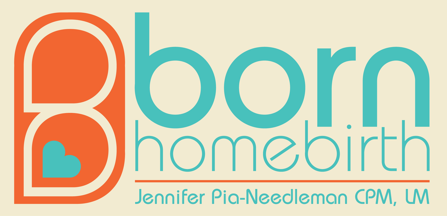 Home Birth Midwife Montpelier Burlington Vermont. Pregnancy, birth, postpartum care.  Insurance and Medicaid accepted.