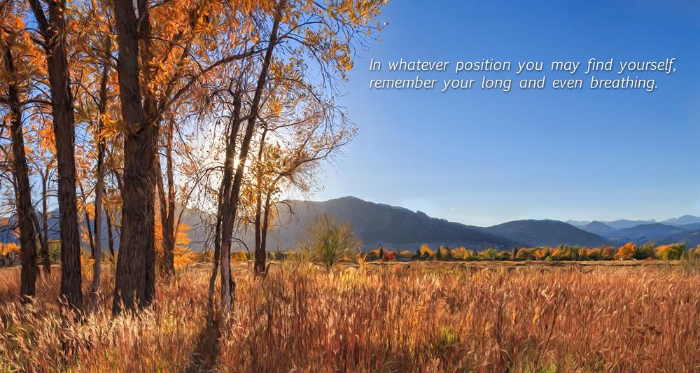autumn scene with text.jpg