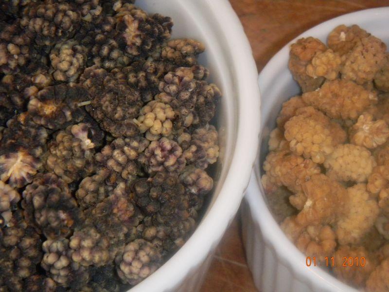 Afghan chix snack bars 182