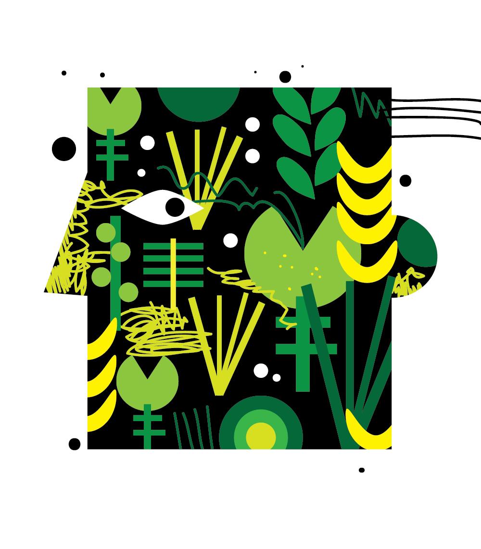 HERBS illustration   Dominika Lipniewska