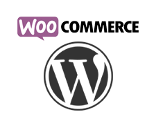 wordpress-woo-interstellar.png