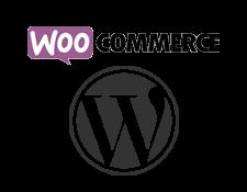 wordpress-woo-interstellar.png