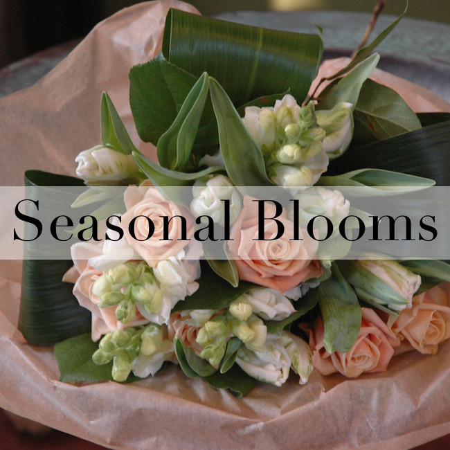 seasonal blooms cover.jpeg
