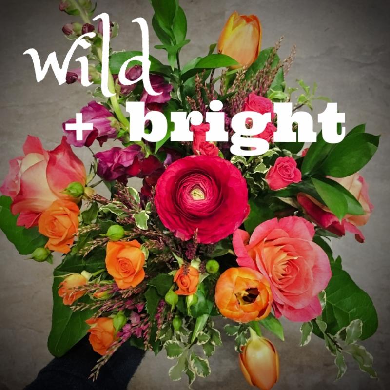 Wild & Bright