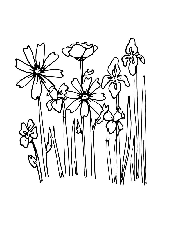 flowersv.jpg