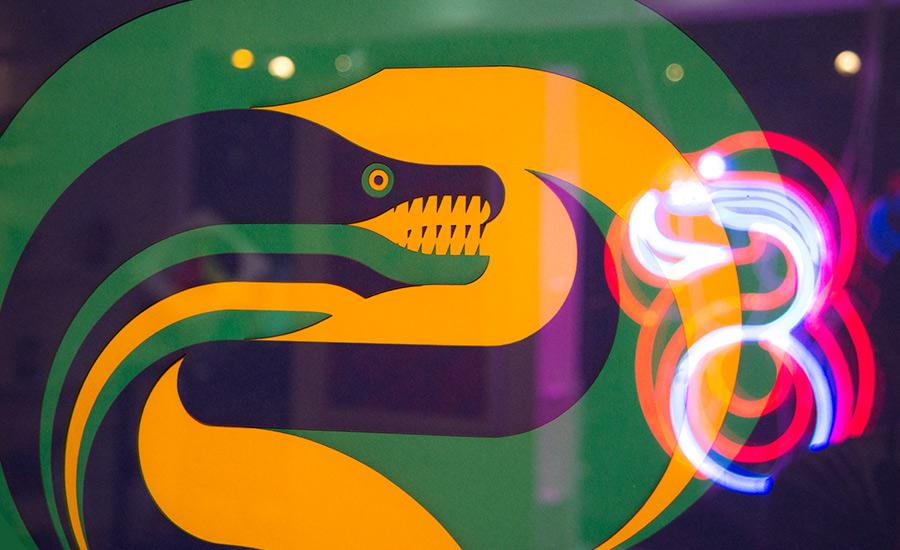 eel-paper-04.jpg