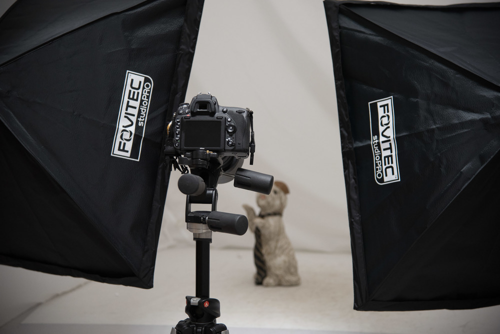 Bryan_Miraflor_Photography_Fovitec_Studio_Pro_850w_Auto_Pop_Up_Softbox_Lighting_Kit_Before_After_Puppy_20160811_0001.jpg