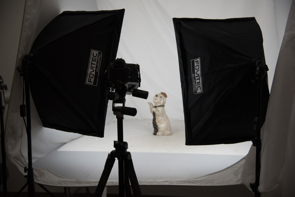 Bryan_Miraflor_Photography_Fovitec_Studio_Pro_850w_Auto_Pop_Up_Softbox_Lighting_Kit_Before_After_Puppy_20160811_0003.jpg