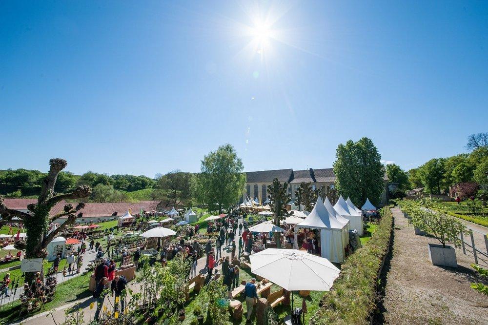 Gartenfest-Dalheim.jpg
