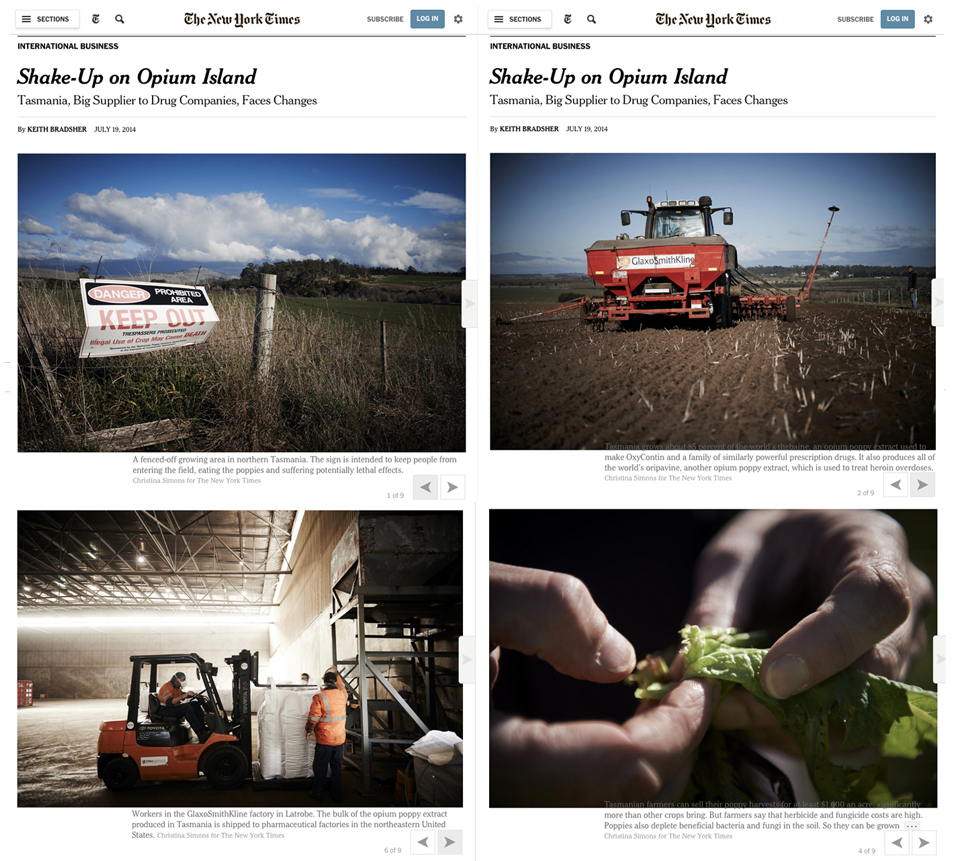 New York Times, Sunday Business Online Gallery
