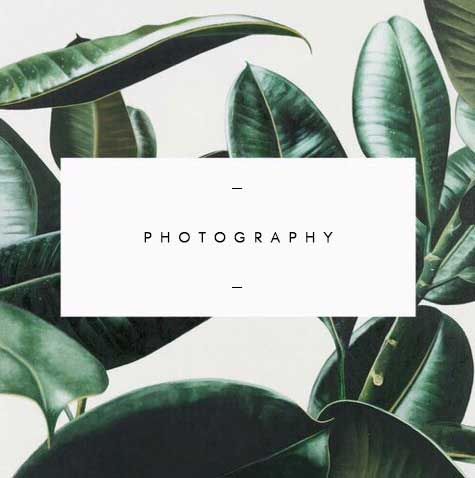 photography manuela saulino