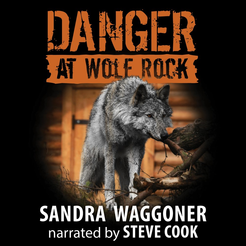 Danger at Wolf Rock Audio Cover.jpg