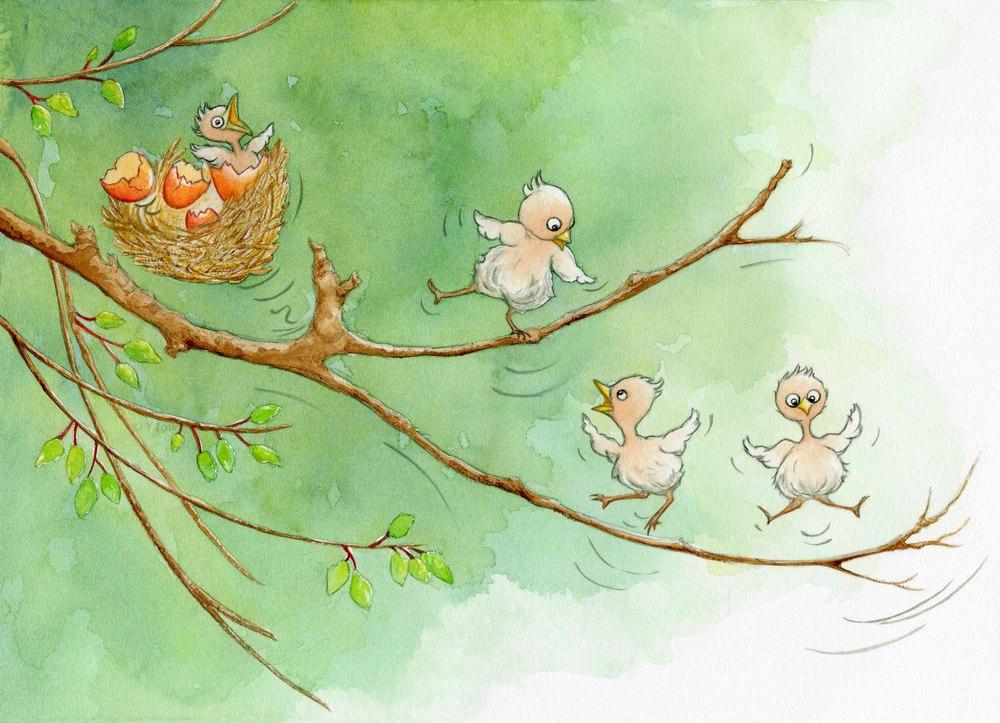 'Bounce' birds.jpg