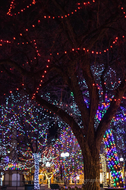 Lights on the Santa Fe Plaza