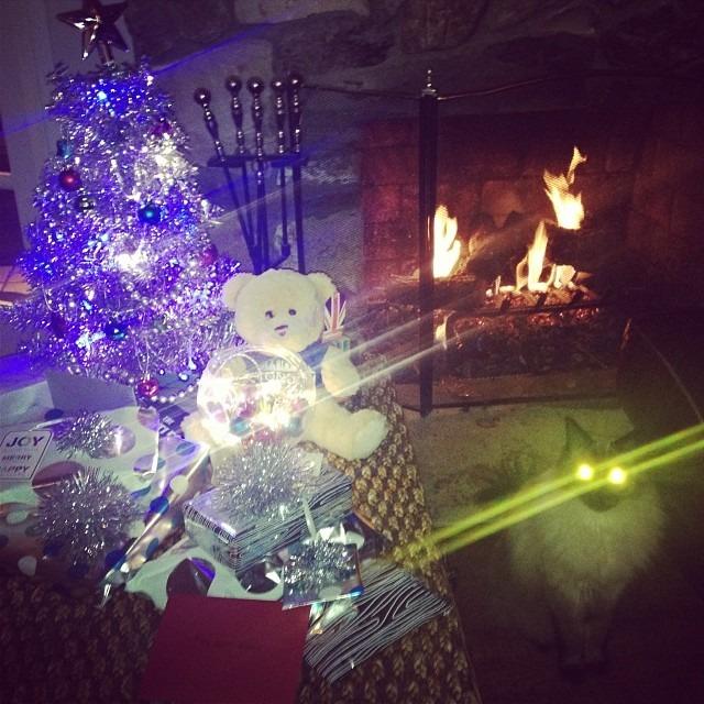 Merry Xmas y'all! #evilcat