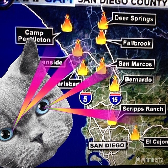 #LaserCat !!!!! The real cause the heat and #fires are happening in #california . (Stolen from @ivydmuerta ) (is this temp picture ok to post @a_dree_awn ?)