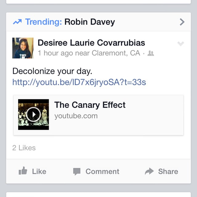 Today my #partnerincrime @therobindavey is trending today on Facebook !! Back in 2006 he made a multi-award winning film called #TheCanaryEffect about the truth behind #ColumbusDay and the genocide of #NativeAmericans. Watch it at  www.growvision.com  and let's all demand to #EndColumbusDay !!