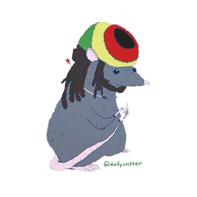 Jah bless yal viral diseases with Ratsafari. #rastafari #rats #ratsofinstagram #rasta #jahbless #puns #wordplay #daily #dailycritter #playingcards