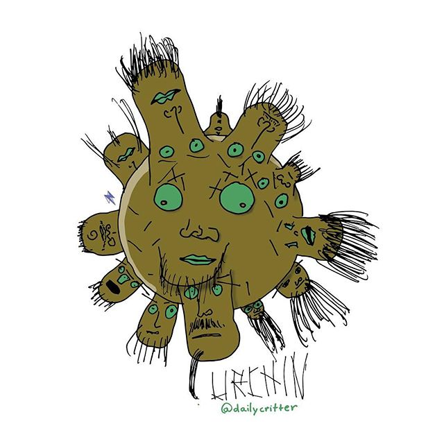 Bunch of pricks. #urchin #seaurchin #chins #chin #puns #wordporn #playingcards #critter
