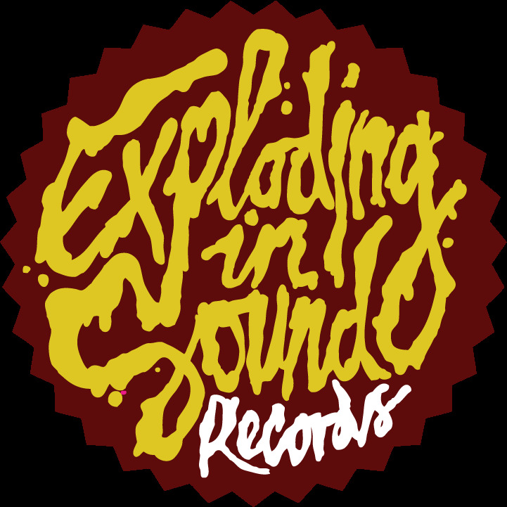 Exploding in Sound records.jpg
