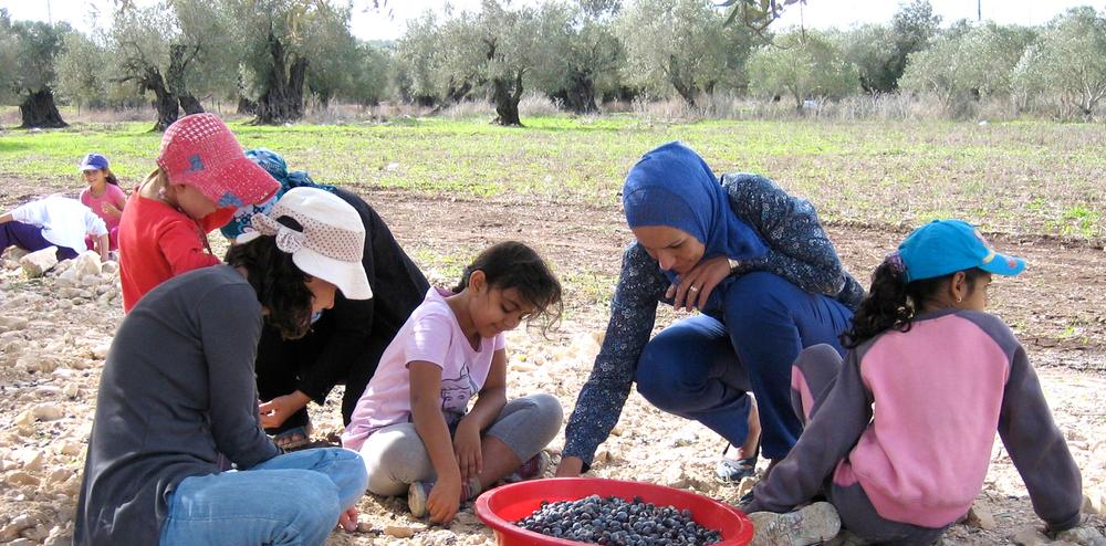 Tamrat-El-Zeitoun-Olives.jpg