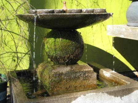 fountain-with-moss.jpg