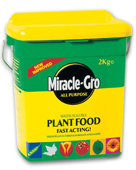 Summary of scotts miracle gro the spreader sourcing decision