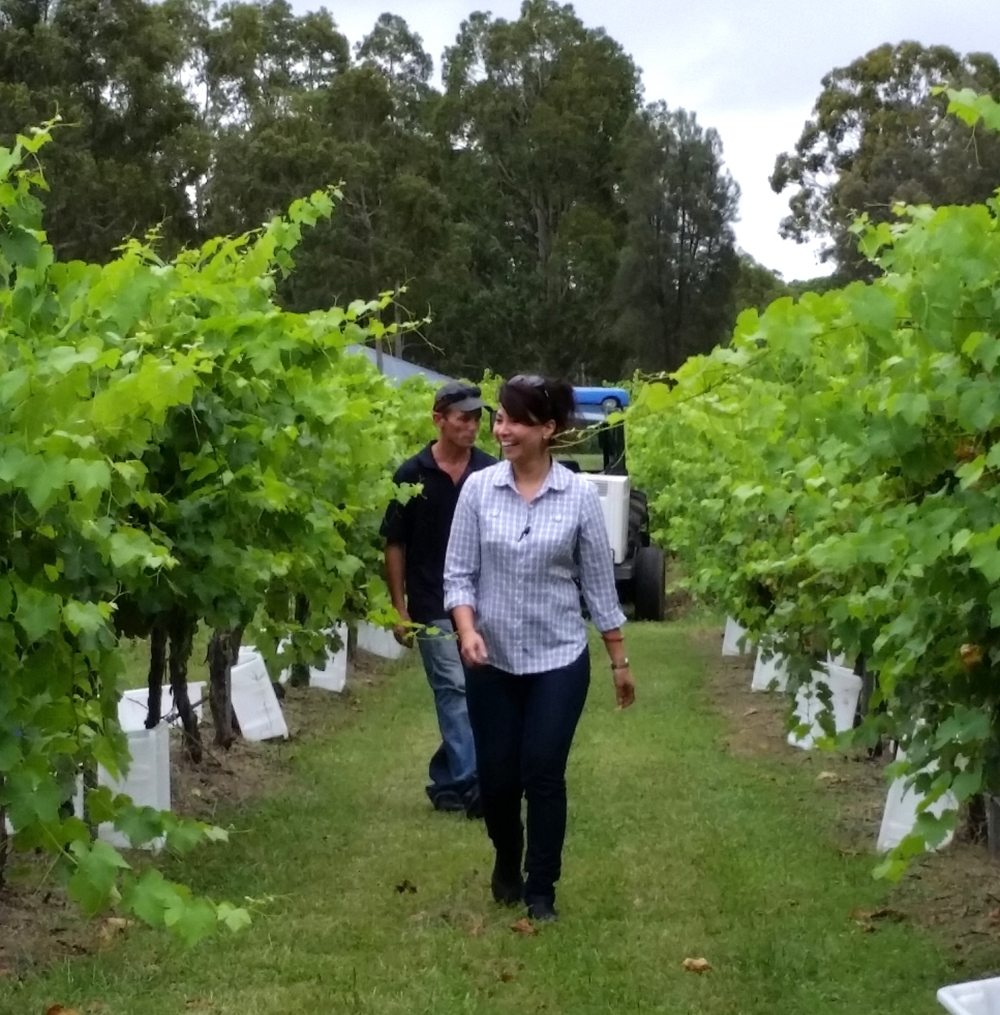 Walk the Vineyards with a Grower