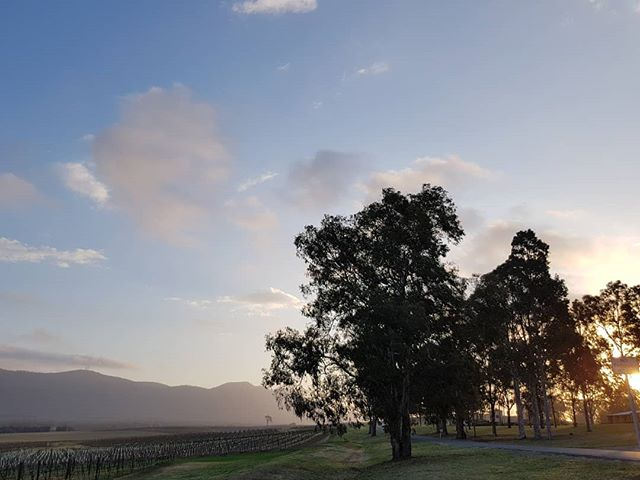 Dusk in Wine Country. #visitsoon . . . . . . #huntervalley #sunset #bestviews #spring #visitnsw #seeaustralia #huntervalleywine #escapetothehunter #weekendescape #shortbreak #sydney #huntervalleyvineyards