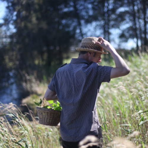 - Grey, T. (2013, October 3). Hunting for Dinner: Wild Food Foraging with Diego Bonetto. Broadsheet – Sydney