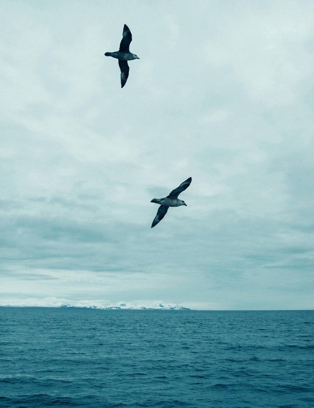 160612_Svalbard_1242V2.jpg