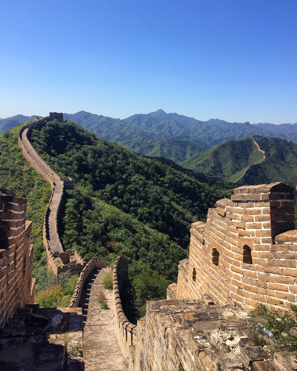 The Great Wall of China, Wild Wall