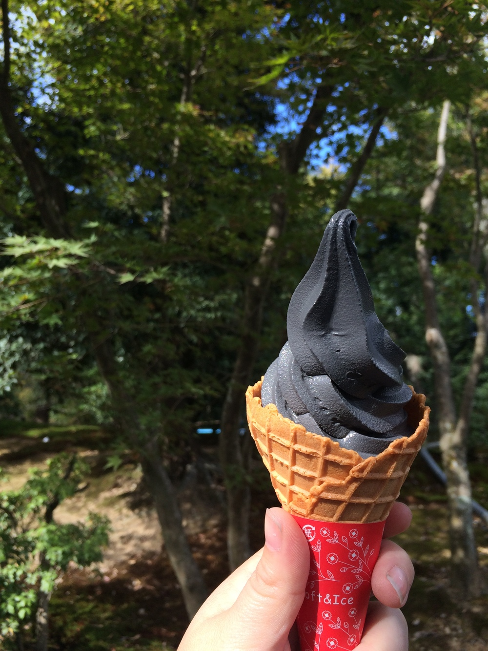 Black Sesame Ice Cream. The Golden Pavilion, Kyoto, Japan.