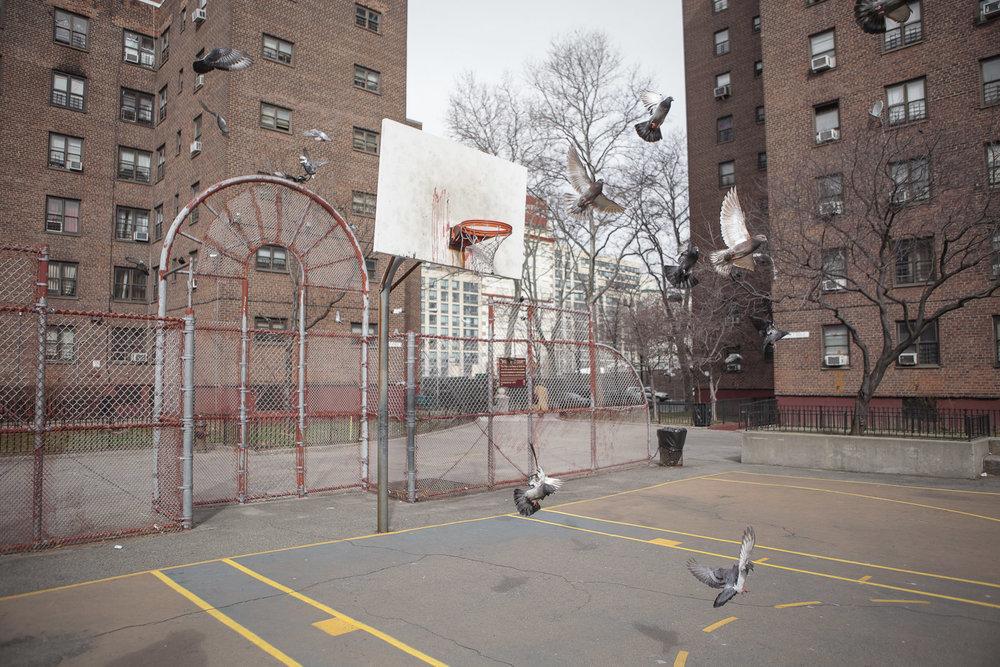 Navy Walk, Brooklyn.