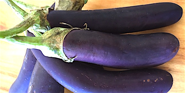 regular globular eggplant are also fine to use, just cut into slices then pie-shaped pieces so there is skin on all pieces
