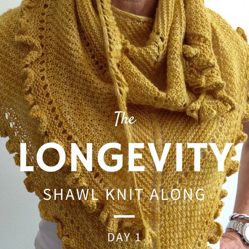 Longevity Shawl Knit Along - Day 1