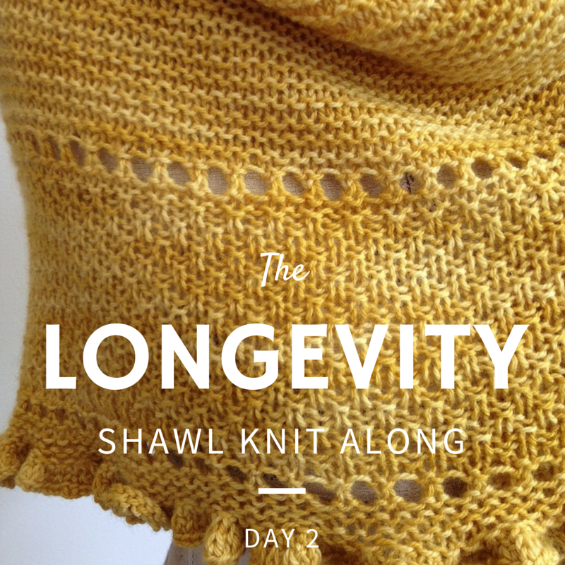 Longevity Shawl Knit Along: Day 2