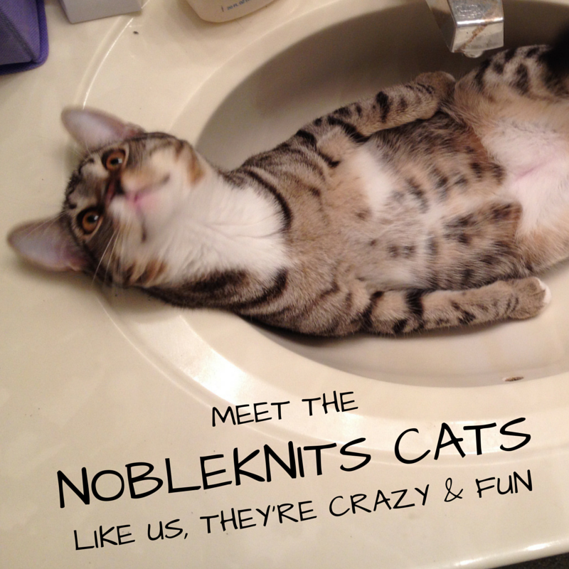 Meet the Cats of NobleKnits