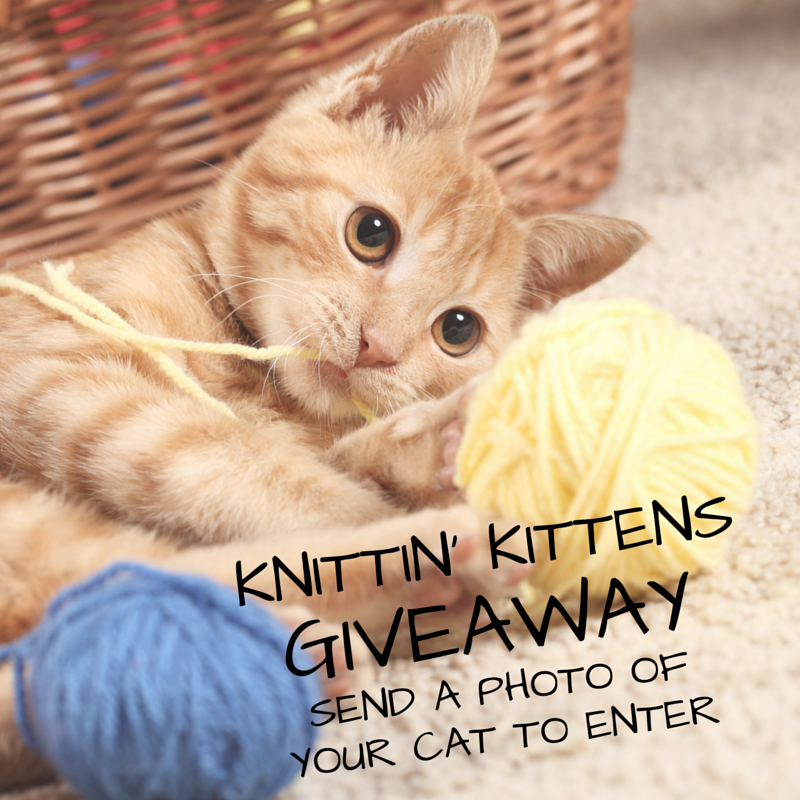 See the Knittin' Kittens Winner and view all Cats!