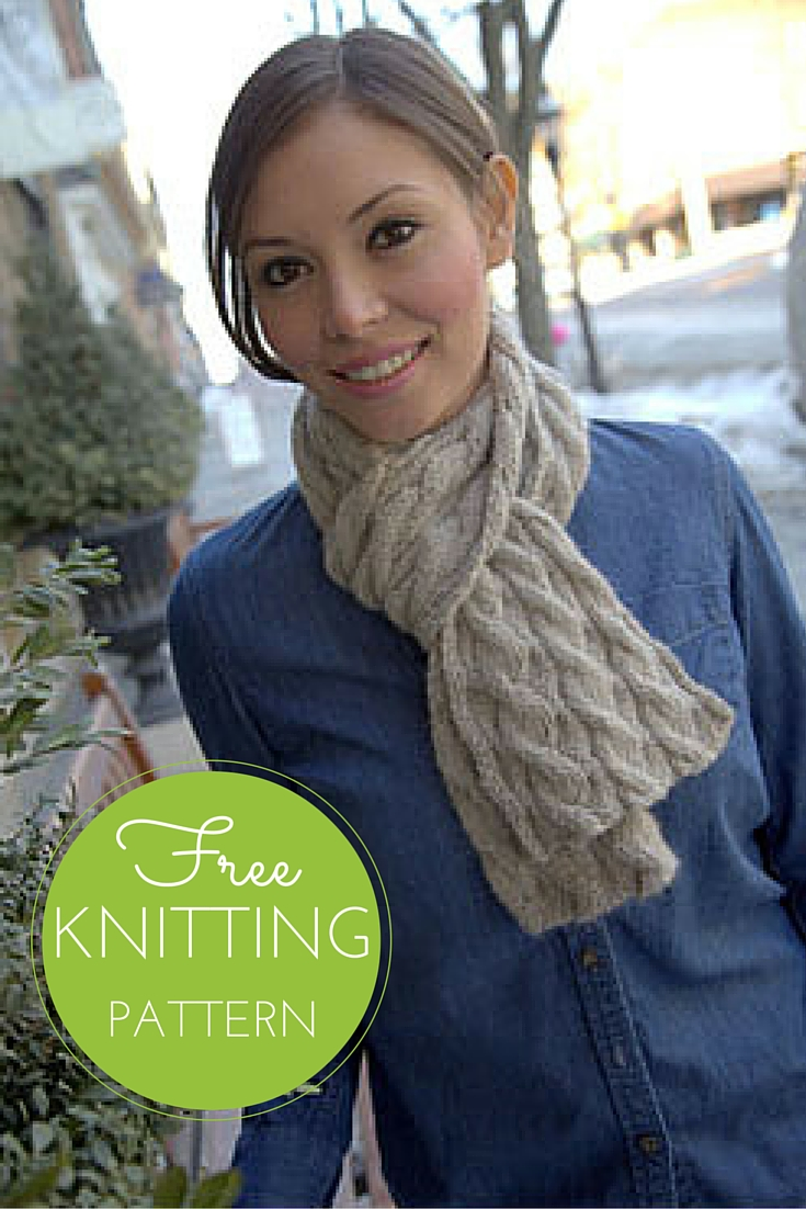 Nickel & Dime Scarf: Reversible Cable Scarf Free Knitting Pattern!