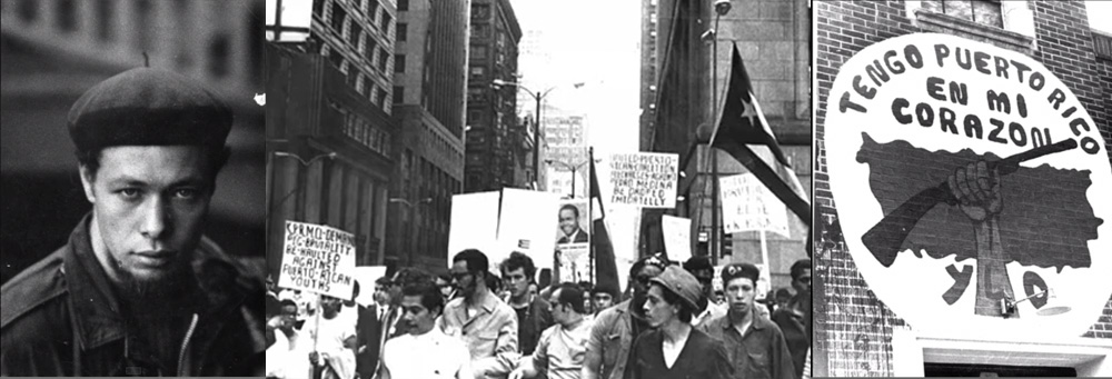 introduction to the young lords the young patriots the original